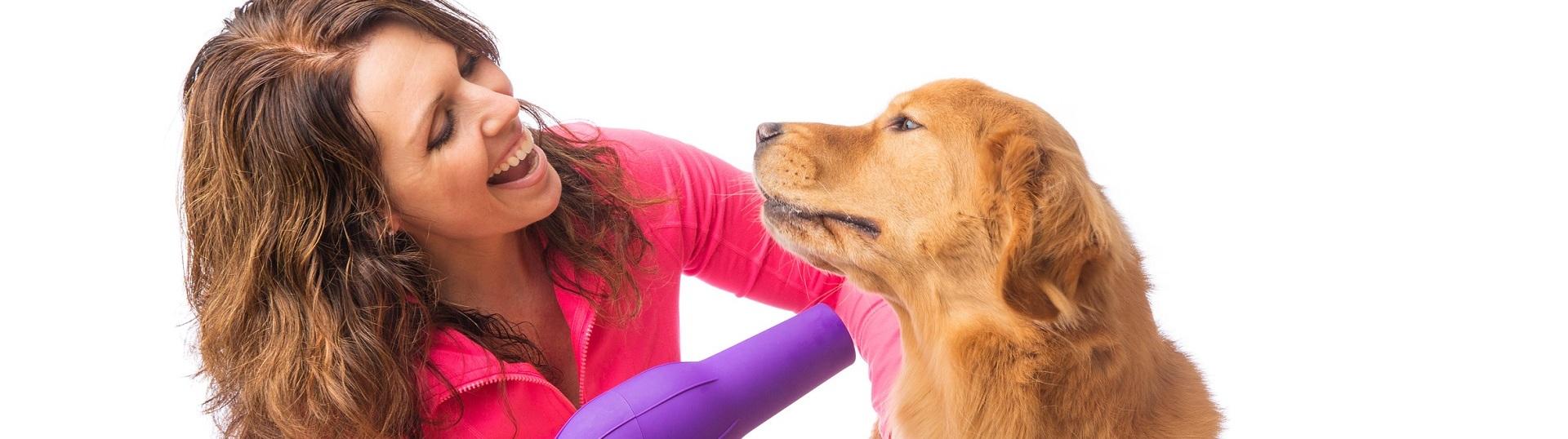 Pflegeprodukte für Hunde bei Greenheart Austria