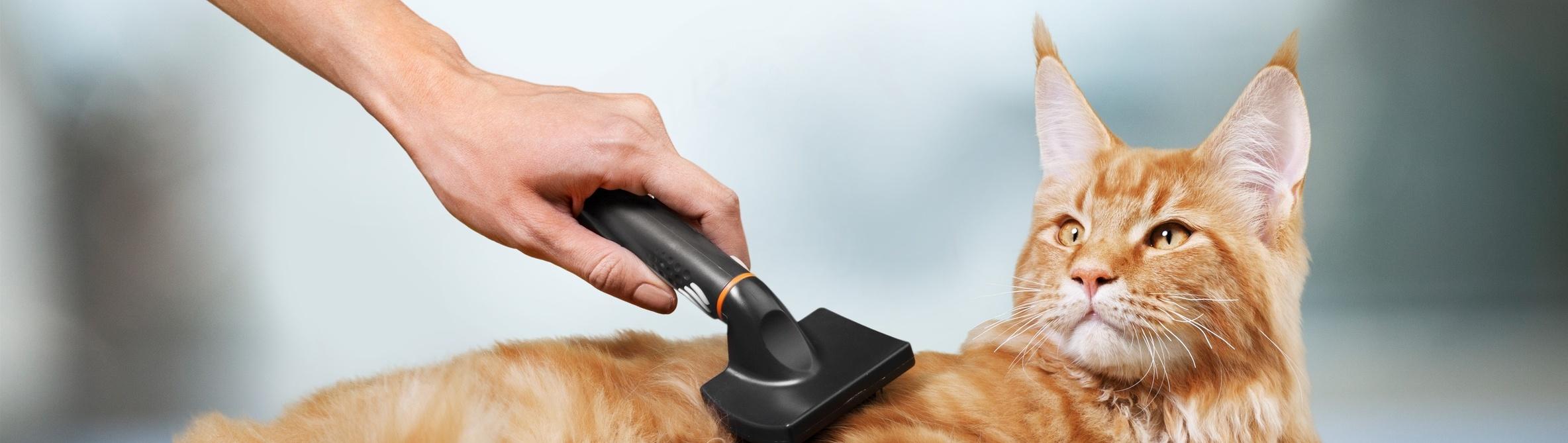 Pflegeprodukte für Katzen bei Greenheart Austria