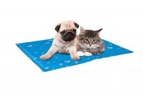 Kühlkissen für Hunde und Katzen
