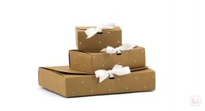 Geschenk-Box mit Schleife